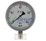 布莱迪[BLD]YTHN-100.AO.531.M100.M20.XS型全不锈钢耐震压力表