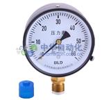 布莱迪[BLD]Y-100.AO.200.M100.M20.XS型压力表