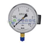 布莱迪[BLD]YTZ-150.AO.201.M120.M20.XS型电阻远传压力表